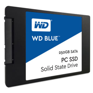 Western Digital Blue PC SSD WDS250G1B0A